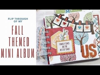 MINI ALBUM FLIP THROUGH | VELLUM ENVELOPE POCKET | FOLD OUTS | TIP INS
