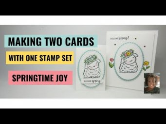 Springtime Joy Equals Double Happiness One Stamp Set/ Two Cards