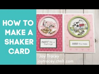 How to Make a Shaker Card! Wild and Punny Shaker Cards