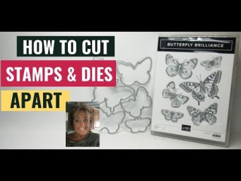 DIY HOW TO SEPARATE STAMP IMAGES & DIES Butterfly Brilliance Bundle