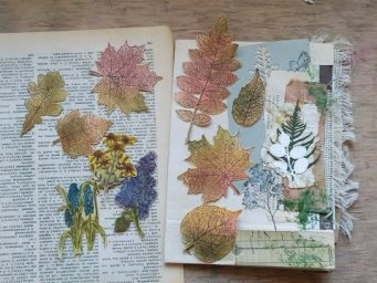 Stamping and distress ink coloring your own botanical ephemera / eco junk journal fussy-cut tutorial